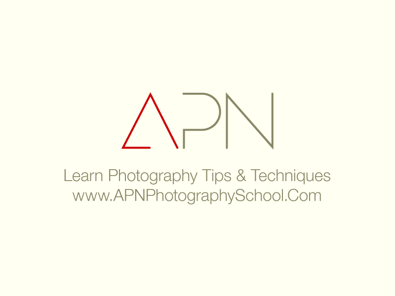 Introduction To APN
