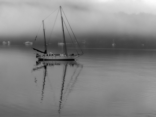 Anchored in Mist