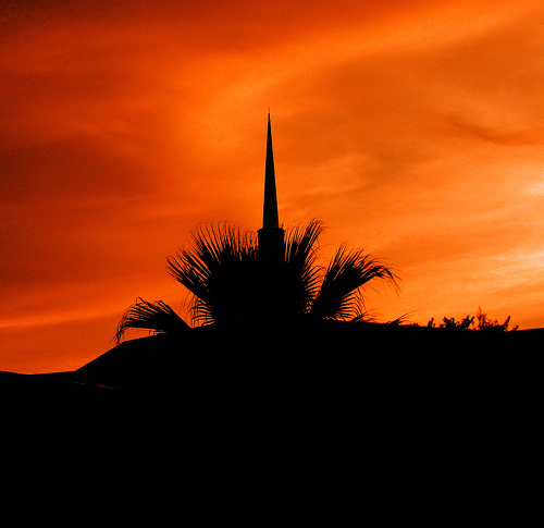 Church And Palm Against Autumn Sky