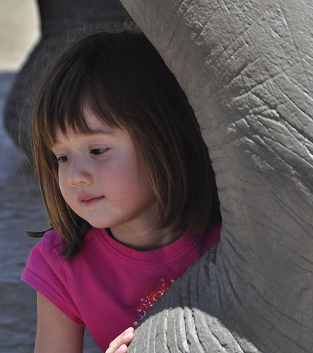 Little Girl Thinks About Elephants