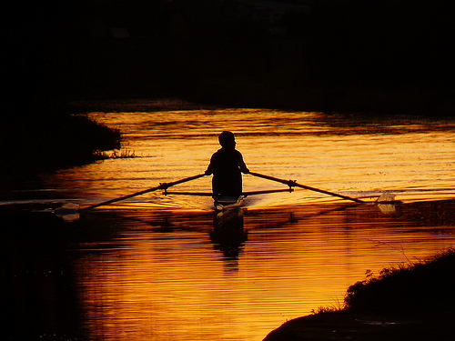 Silhouetted Sculler