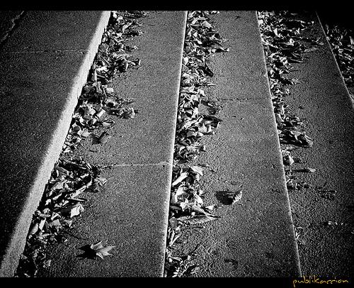 Street Photography, Centro