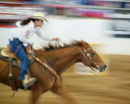 Determination - Barrel Racing