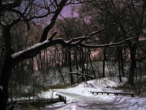 Quiet Winter Night