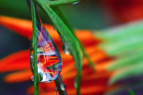 Shooting Water Droplets 51 Stunning Examples Of Water