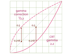 Gamma_function_Graph