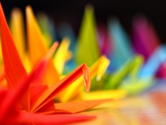 Colorful Cranes DOF